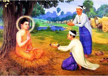 Những Hạt Cơm Của Phật