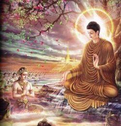 Bộ hình ảnh đẹp Lịch sử Đức Phật Thích Ca Mâu Ni (1)