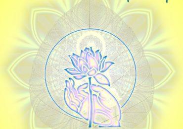 100 Câu Hỏi Phật Pháp (Tập 2)