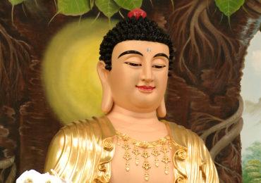 Đức Phật Là Bậc Thầy Các Nhà Khoa Học
