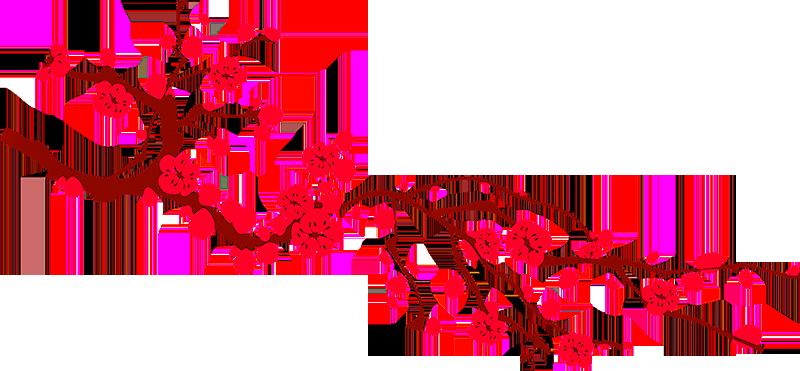 Lễ Đón Giao Thừa Xuân Canh Tý 2020 (Jan 24, 2020) – Chùa Đại Bi
