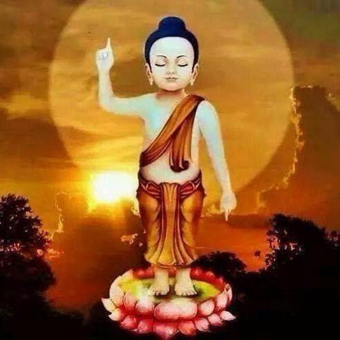 Cảm Niệm Mùa Phật Đản