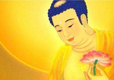 Hiểu về pháp môn niệm Phật