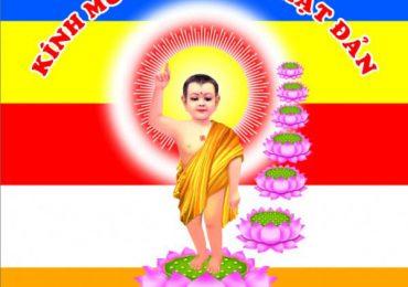 Thư Phật Đản
