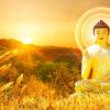 Nhạc Niệm Danh Hiệu – Phật Bổn Sư Thích Ca Mâu Ni