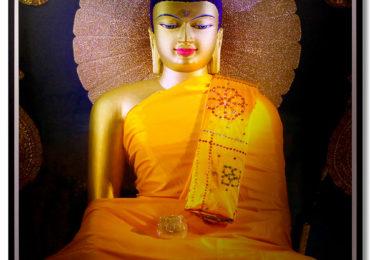 Hành Hương Chiêm Bái Phật Tích Ấn Độ – Nepal 2019 – Chùa Đại Bi
