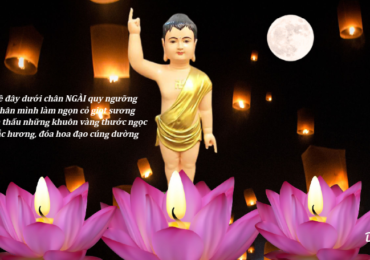 Đại Lễ Phật Đản – PL. 2565 tại Chùa Đại Bi